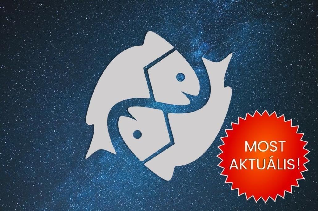 Halak csillagjegy Artemisz Asztrológia Webshop