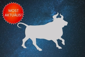 Most aktuális Bika csillagjegy Artemisz Asztrológia Webshop